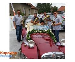 trubaci aleksandrovac 0638652334