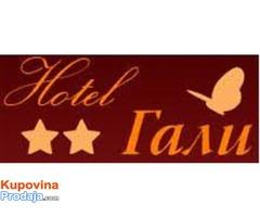 Hoteli u Pirotu