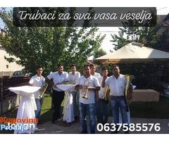 trubaci leskovac 0637585576