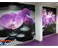 Lepljenje svih vrsta zidnih tapeta, fototapete KOMAR, molerski radovi, krečenje, gletovanje
