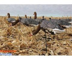 Lokeri (mamci) za lov divljih gusaka