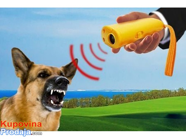 Rasterivač pasa