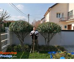 Uređenje dvorišta, bašta, vrtova - Fotografija 1/8