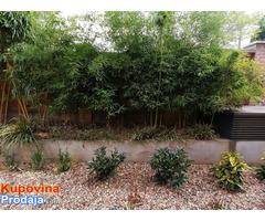 Uređenje dvorišta, bašta, vrtova - Fotografija 2/8