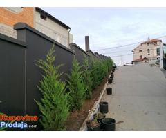 Uređenje dvorišta, bašta, vrtova - Fotografija 6/8