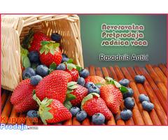 Rezervacija i prodaja voćnih sadnica jesen 2021 - Fotografija 5/6